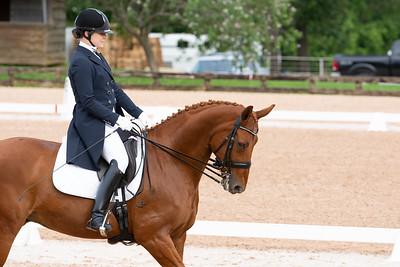 Horse 422