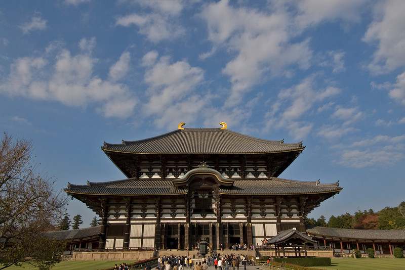 Shot of the Todaiji Temple against clear sky in Nara, Japan