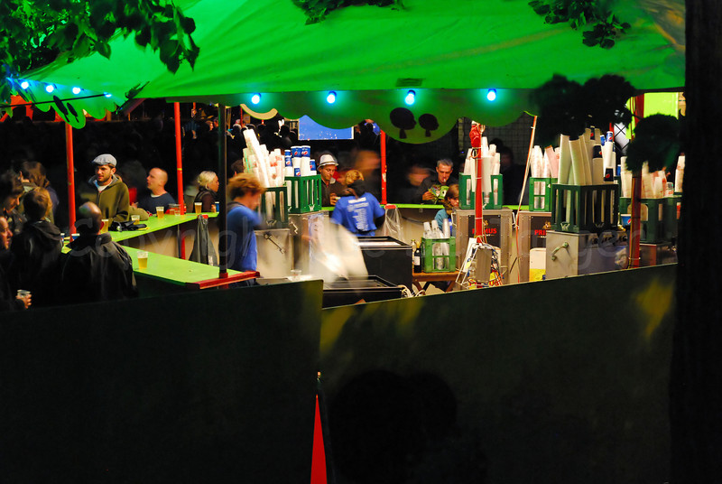 A view on the Baudelopark at night during the 2011 Ghent Festivities (Ghent, Gent), Belgium.