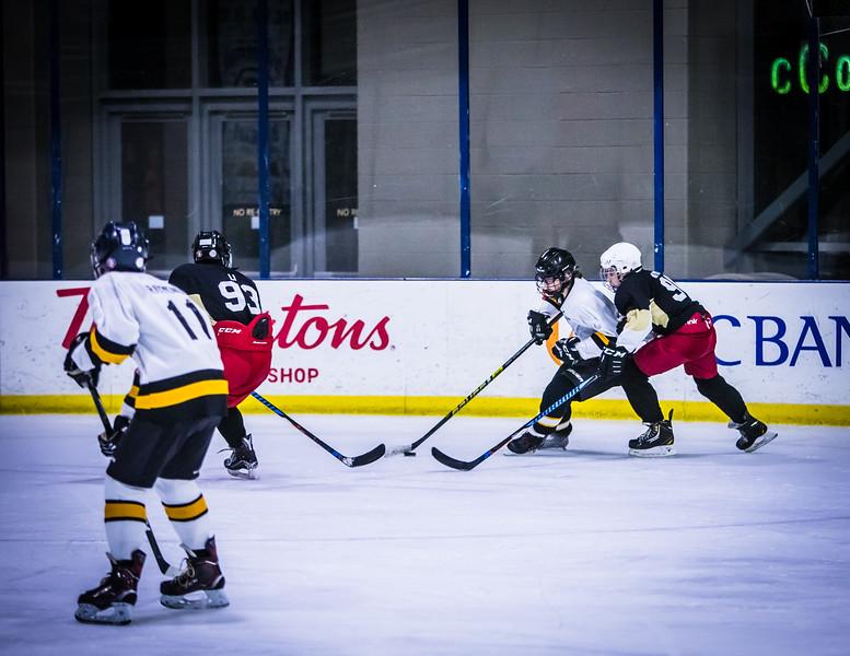 Bruins-158.jpg
