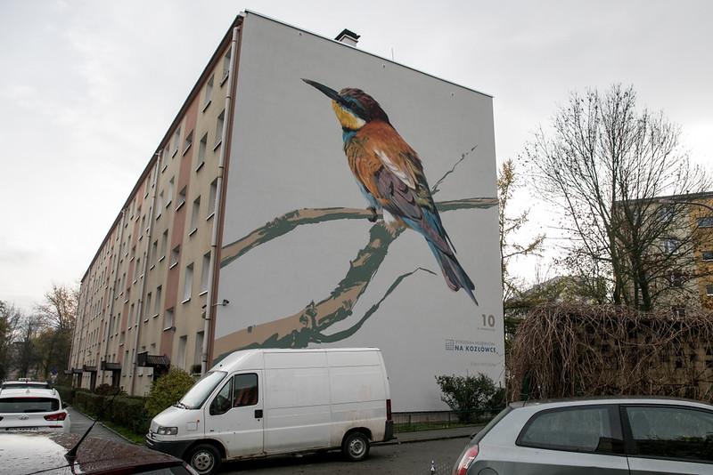 ptasie-murale-autor-wojciech-rokosz_1.jpeg