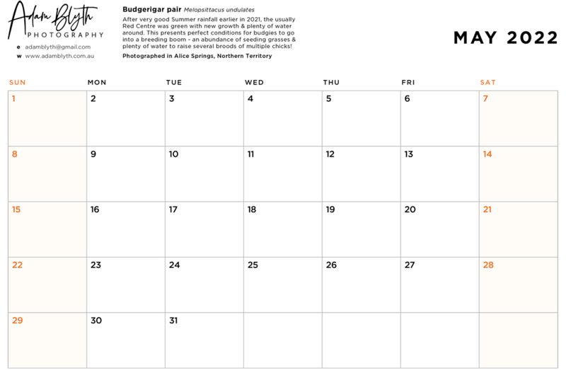 2022_calendar_date_page_example.png
