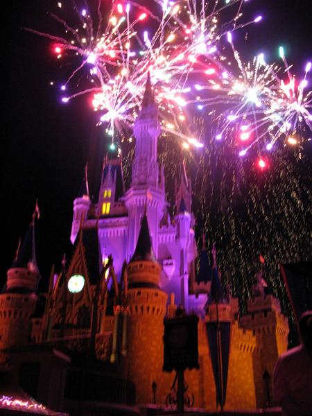 Disney World: All-Star Photos