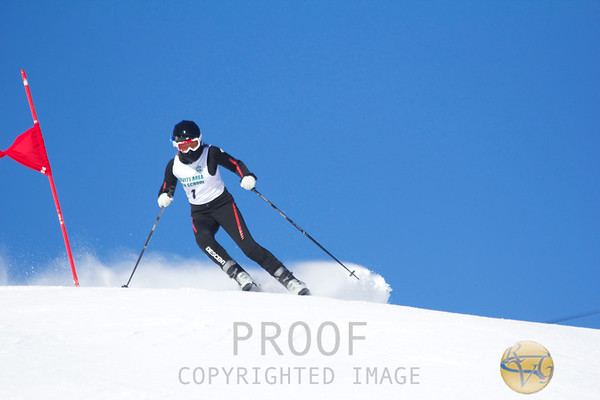 2013 Women's Leavitt Invitational Giant Slalom