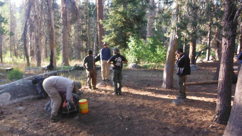 sequoia 047.JPG