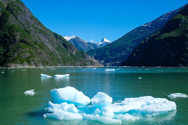 Alaska Cruise-0757.jpg