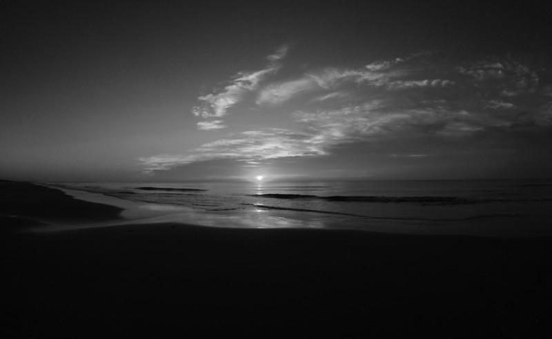 SCOPe_Huntington Beach State Park OCT 2012_12 B&W.jpg