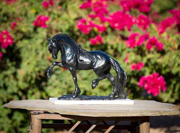 Friesian Bronze