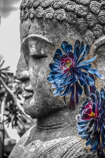 Flowers for a goddess