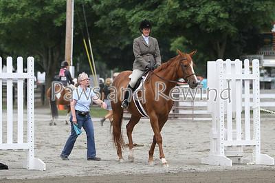 Ring III: Pleasure Horse or Pony