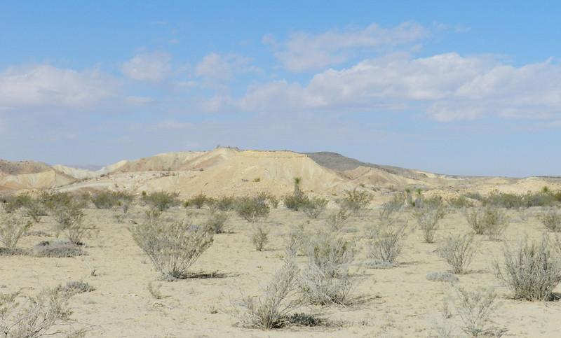 painted dunes6.jpg
