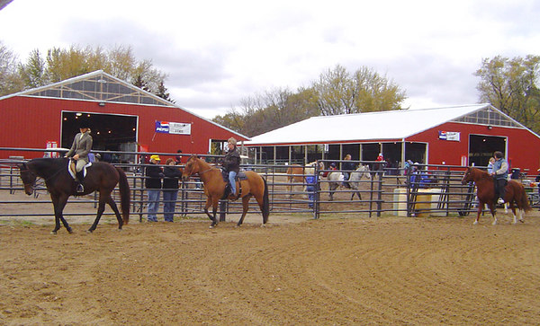 Central Wisconsin Horse Expo 2006