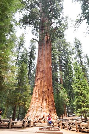 Sequoia National Park, CA