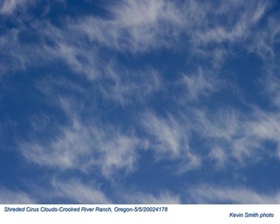 Shreded Cirus Clouds 24178.jpg