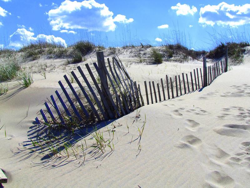 Dam Neck Beach (91).jpg