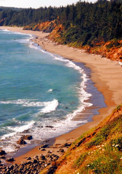 Gold Beach 220 (33128729).jpg