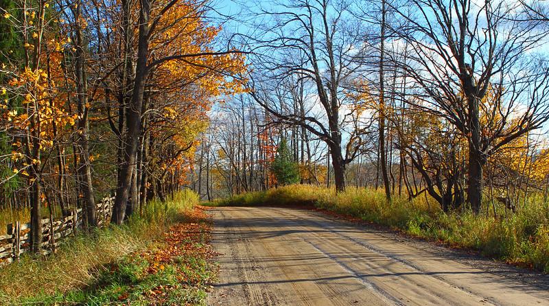 SM Lavender Road.jpg