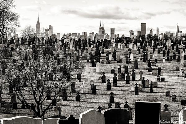 Calvary Cemetery 2018