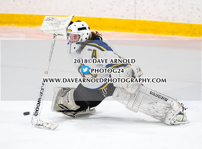 1/30/2018 - Boys Varsity Hockey - Lowell Catholic vs Arlington Catholic