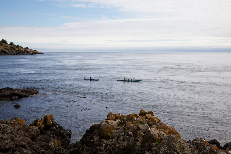 Sea kayaks. Lime Kiln State Park, Washington. San Juan Island.