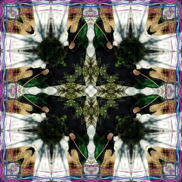 70255_mirror2.jpg
