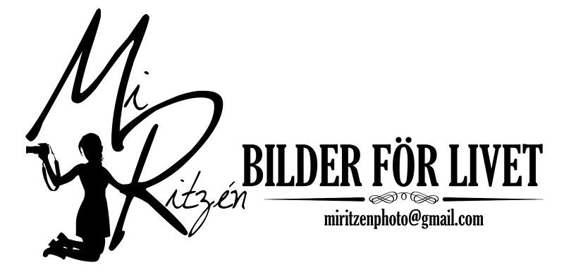 Mi Banner.jpg