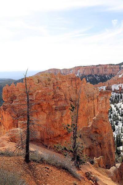 Bryce Canyon 21 4.2017.jpg