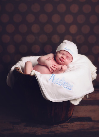 ANDREW ~ Newborn