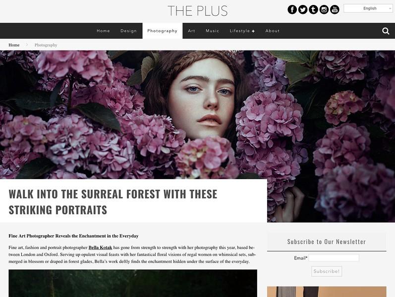 The Plus Paper | 2017