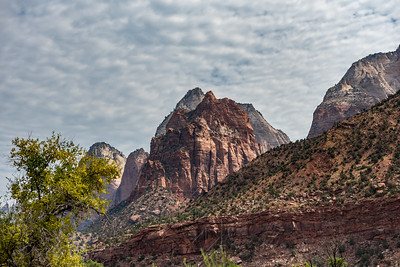 Zion National_2810