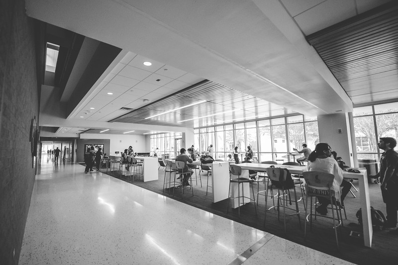 Students relax and study in the University Center's Tejas Lounge