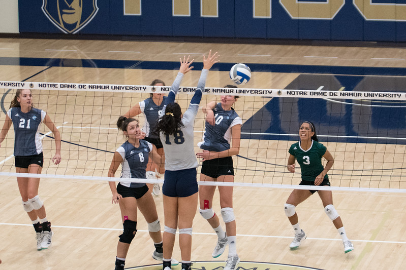HPU Volleyball-92085.jpg