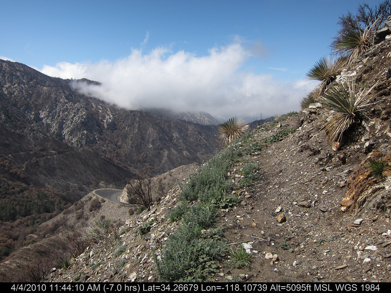 20100404092-Angeles National Forest, Strawberry Peak trail.JPG