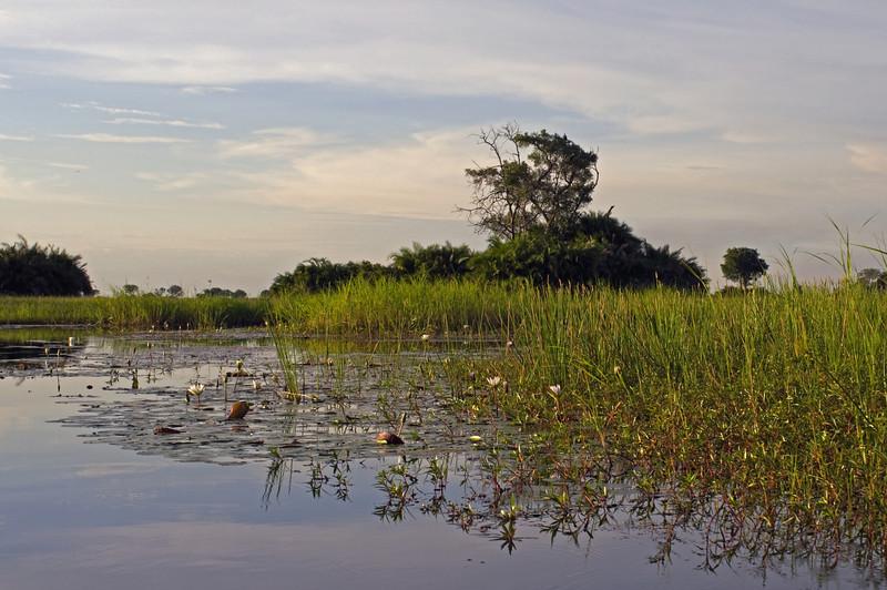 View of Kwetsani from mokoro