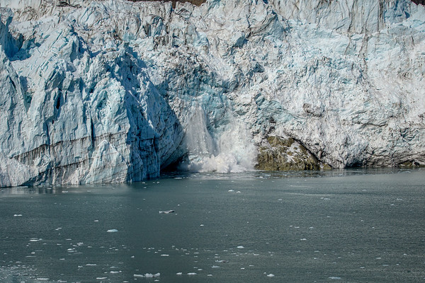 Glacier Bay Highlights