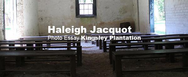haleigh jacqot essay banner.jpg