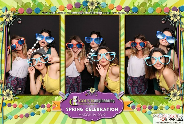 Gouvis Engineering Annual Spring Party