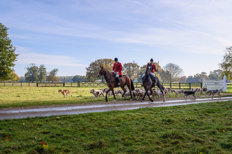 Fitzwilliam Opening meet Nov 2019-12-9.jpg