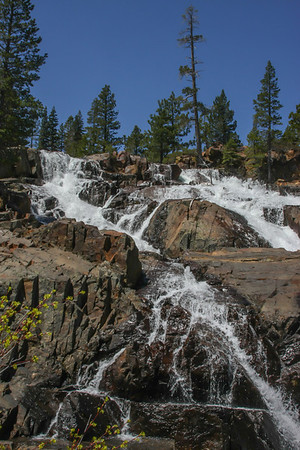 Glen Alpine Falls - Lily Lake