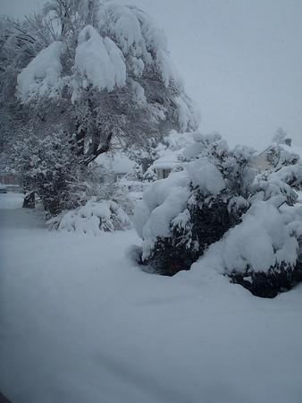 Snowpocalipse 2015