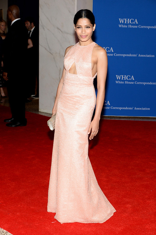 . Actress Freida Pinto attends the 100th Annual White House Correspondents\' Association Dinner at the Washington Hilton on May 3, 2014 in Washington, DC.  (Photo by Dimitrios Kambouris/Getty Images)