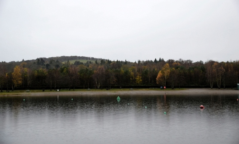 a large lake with greenery in the background