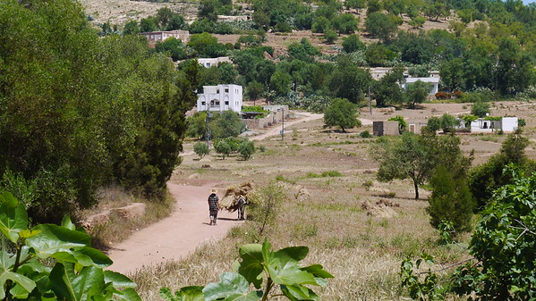 Morocco Rif Landscapes June 2015