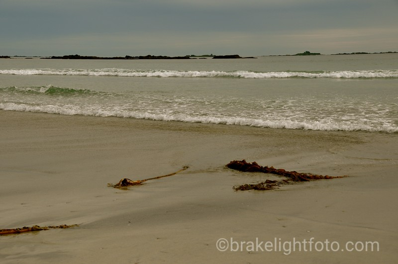 Sandy Beaches of Rugged Point