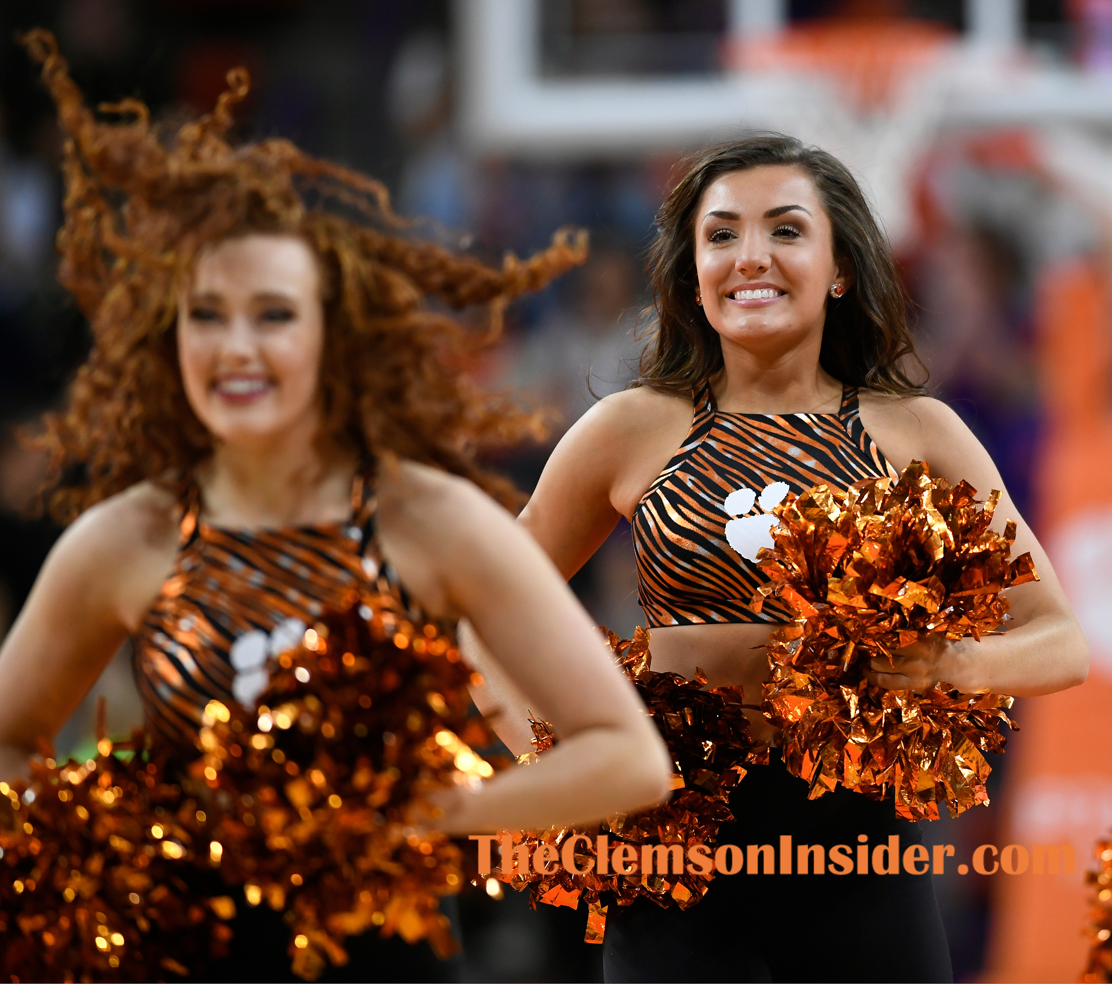 Clemson's Rally Cats dance during the Tigers game against Syracuse Tuesday, January 28, 2020 at Clemson's Littlejohn Coliseum. Bart Boatwright/The Clemson Insider