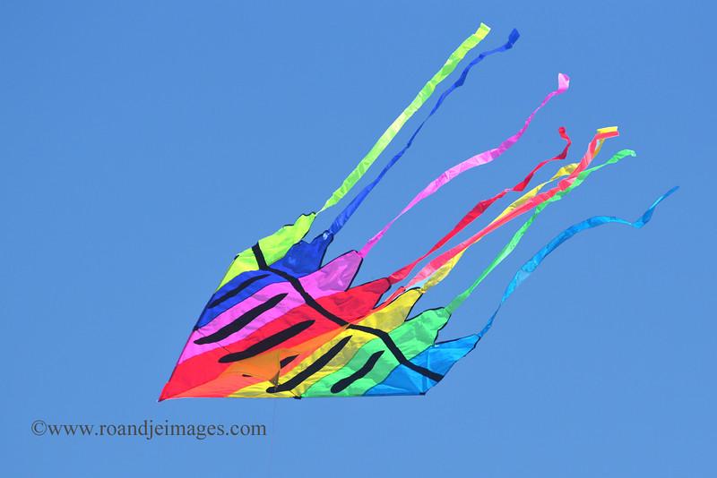 Cherry Valley Kite Fest