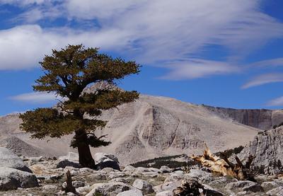August 30, 2012 Cottonwood Lakes Basin - Sierra Nevada Mts.