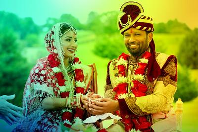 Wedding Ceremony Vibha and Vic