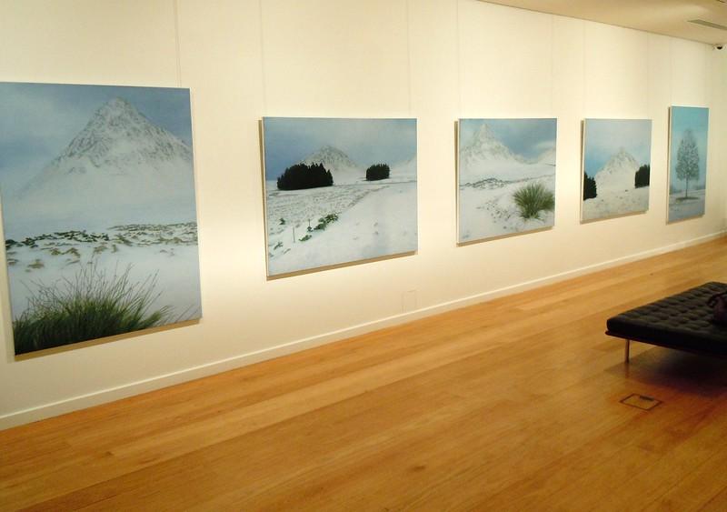 2010 New Paintings, Tim Olsen Gallery , Sydney