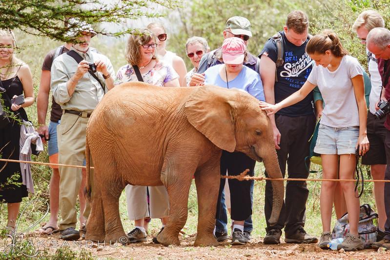 Safari-Africans-165.jpg